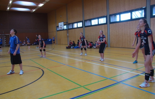 U16w am 22.2.2015 in Munster